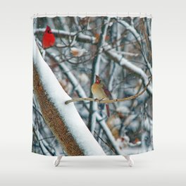 I'm the Boss here! Shower Curtain