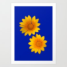 Two Yellow Flowers on Funky Blue Background Art Print