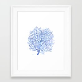 Navy Blue Coral Sea Fan #2 Framed Art Print