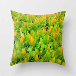 Field of Celosia Throw Pillow