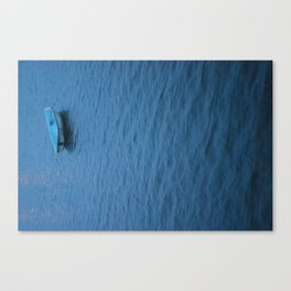 Little Willy Canvas Print