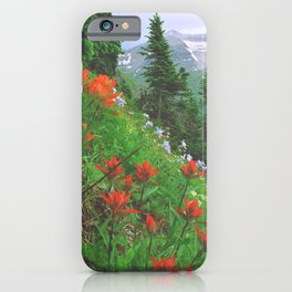 Wildflowers above Ouray in the San Juan Mountains of Colorado iPhone Case