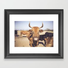 On the Farm  Framed Art Print