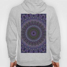 Floral mandala in violet and purple tones Hoody