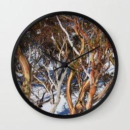 Snow Gums Wall Clock