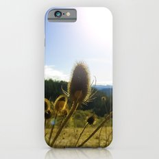 Colorful Winter Day iPhone 6s Slim Case
