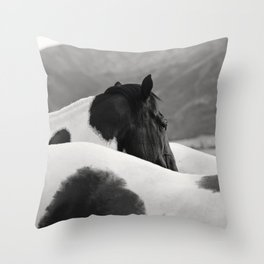 Pinto Horse Photograph Throw Pillow