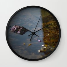 i sea weed Wall Clock
