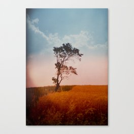 einsamkeit Canvas Print