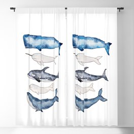 Watercolor orca whale, spermwhale, humpback, narwhal, beluga whales Blackout Curtain
