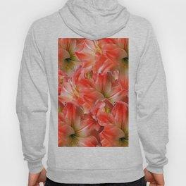 Pink & Red Amaryllis Patterns Floral Art Hoody