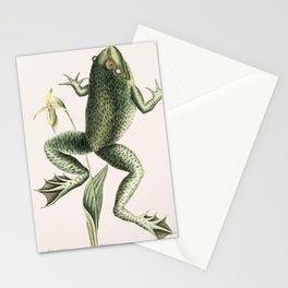 Bull Frog (Rana maxima) from The natural history of Carolina Florida and the Bahama Islands (1754) b Stationery Cards