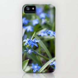 Little blue stars blooming iPhone Case