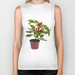 Shrub decorative pepper Kapsicum on a white background Biker Tank