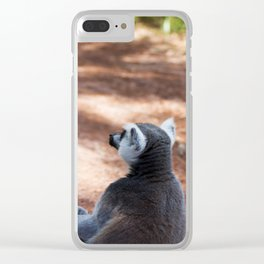 Lemur Catta III Clear iPhone Case
