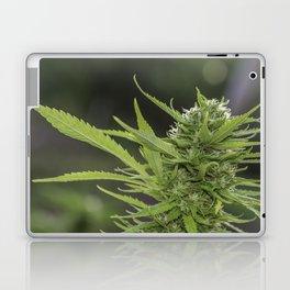 Cannabis 1 Laptop & iPad Skin