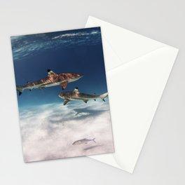 Hello, Sharks! Stationery Cards