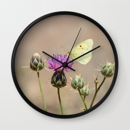 Clouded Yellow Butterfly Wall Clock