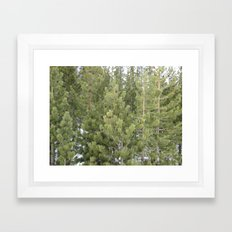 Lost in the forest Framed Art Print
