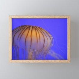 Jelly Fish Framed Mini Art Print