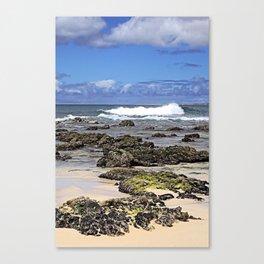 Boa Vista Rocky Shore Line Canvas Print