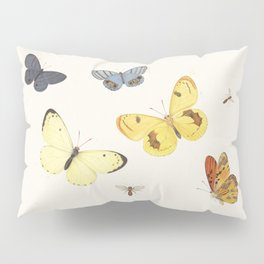 Vintage Butterfly Illustration - Yellow Pillow Sham