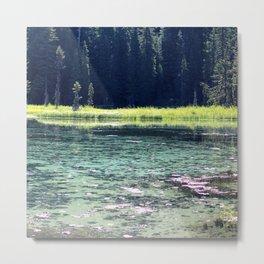 Pink and Teal Swamp Metal Print