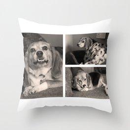 Life of a Beagle Throw Pillow