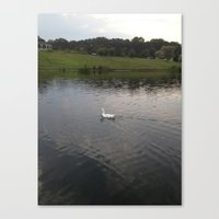 duck Canvas Prints featuring duck by Zaynab Hazaveh