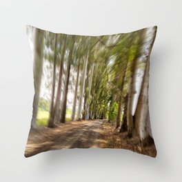 Spin Road Throw Pillow