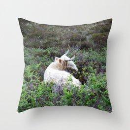 Highland Coo Throw Pillow