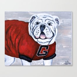 Georgia Bulldog Uga X College Mascot Canvas Print