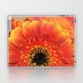 Sunset Gerbera Daisy macro Laptop & iPad Skin