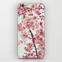 cherry blossoms iPhone & iPod Skins featuring Cherry blossoms by Photography by Karin A