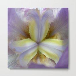lily bloom macro XVII Metal Print