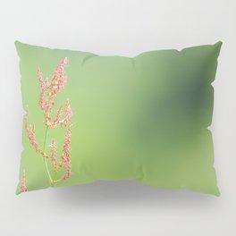Reddish flower on a green Pillow Sham