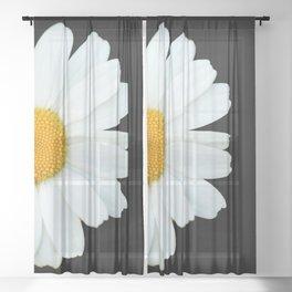 Hello Daisy - White Flower Black Background #decor #society6 #buyart Sheer Curtain