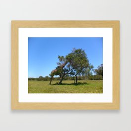 You can't see me, I'm hiding Framed Art Print