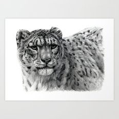 Snow Leopard G2010-003 Art Print