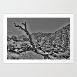 Dead tree in the desert Art Print
