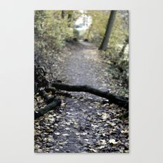 something in the way. Canvas Print