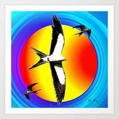 Swallow tailed Kite 2 Art Print