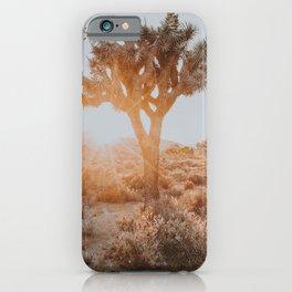 Joshua Tree XVII / California Desert iPhone Case