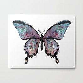 rainbow swallowtail (Papilio regnbogi) Metal Print