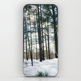Winter Woods1 iPhone Skin
