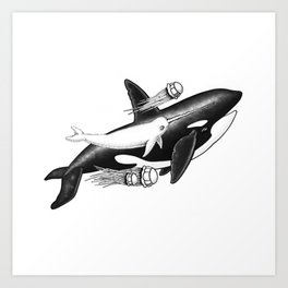 Killer Whale and Fuzzy Narwhal  Art Print