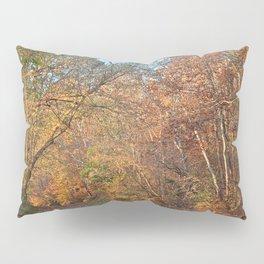 Autumn Pennyfield Canal Pillow Sham