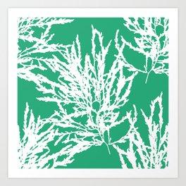 Aqua Marine Seaweed Art Print