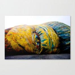 Awakening Van Gogh Canvas Print