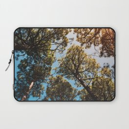Trees and sky in sunlight- forest landscape - nature photography Laptop Sleeve